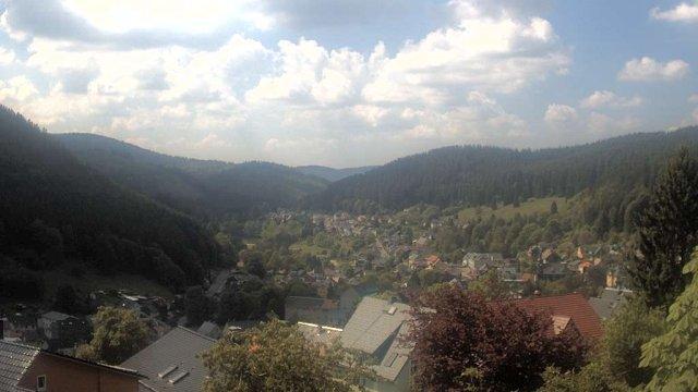 Webcam Manebach - Blick vom oberen Berggrabenweg auf den Ort (Juni)