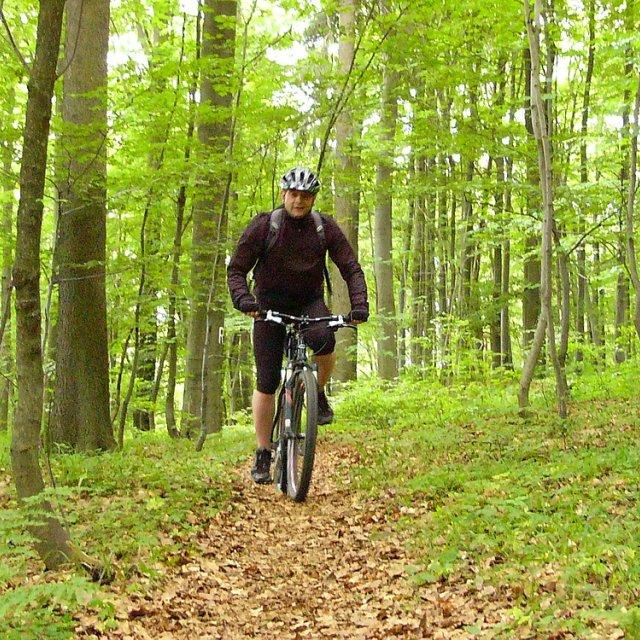 Frauenwald - Radfahrer im Wald