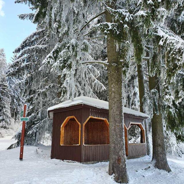 Schutzhütte Oehrenstock