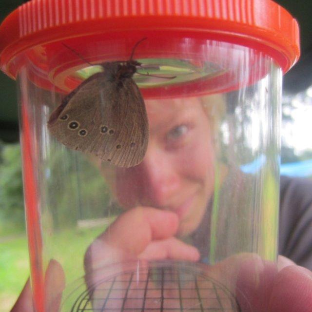 Kickis Insektenforscher