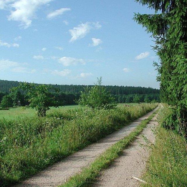 Weg bei Unterpörlitz, Foto: Horst Bradsch