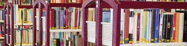 Bücher in Regalen