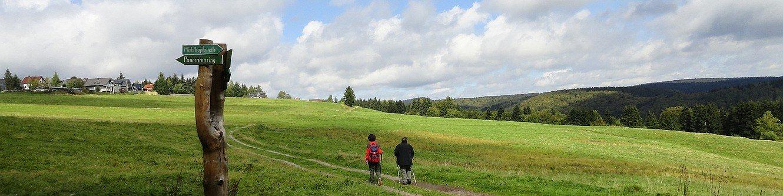 Panoramaring Frauenwald