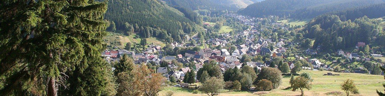 Blick auf Manebach vom Oberen Berggrabenweg