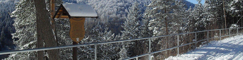 Oberer Berggrabenweg