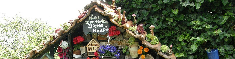 Detail im Garten von Herrn Grundtner