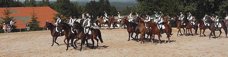 Pferdesport auf dem Reiterhof in Oberpörlitz