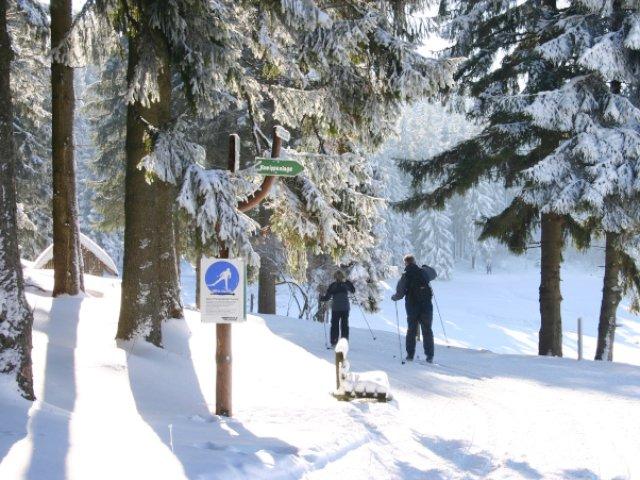 Stützerbach Winter