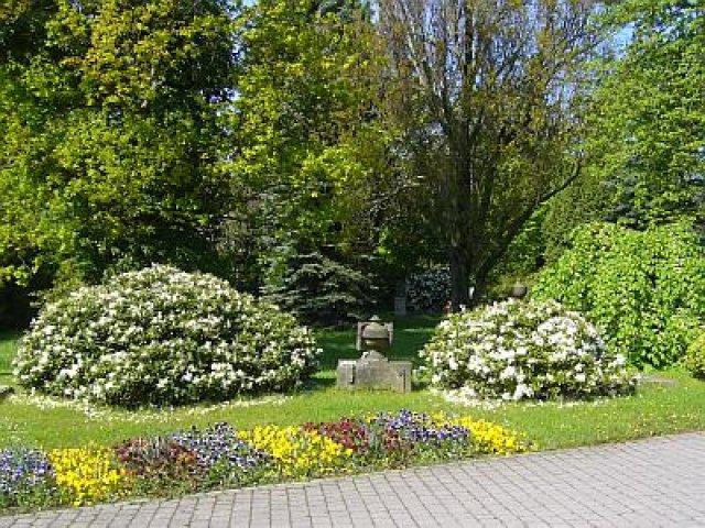 Historischer Friedhof im Frühjahr