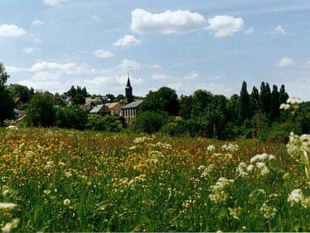 Blick über Sommerwiese Richtung Unterpörlitz