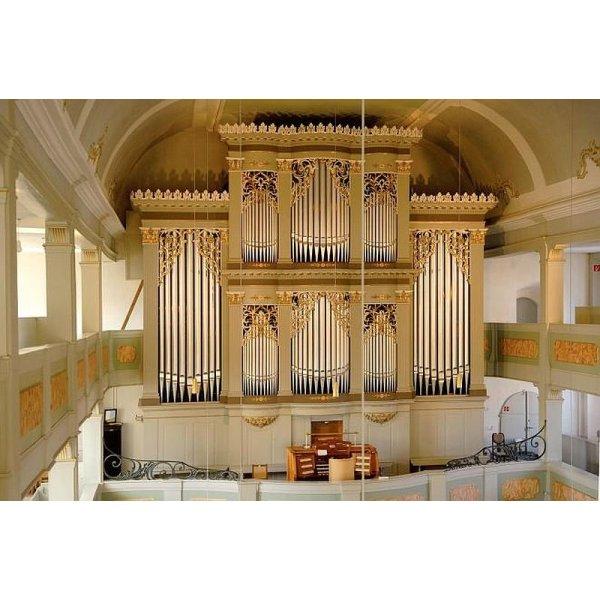 Führung- Die über 100-jährige Walcker Orgel