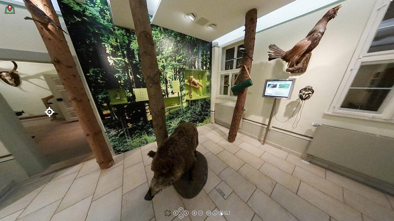Virtueller Rundgang im Museum Jagdhaus Gabelbach